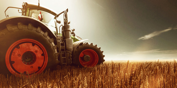 scpa-champ-ble-tracteur