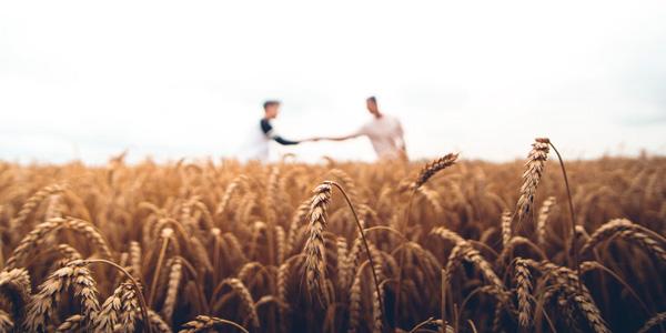 négociant agricole
