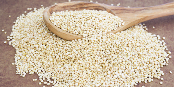 scpa-quinoa