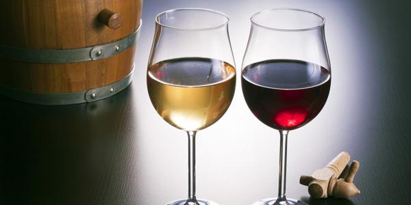 scpa-vins-2