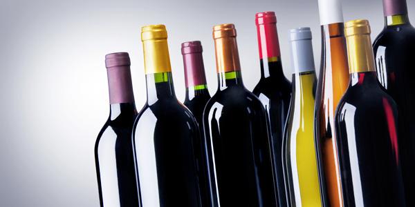 scpa-vins
