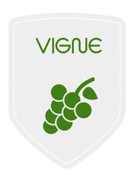 magasin viticole